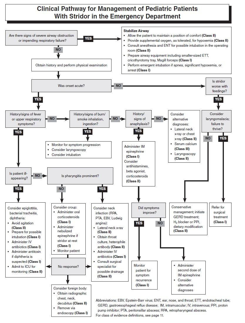 Clinical Pathway for Management of Pediatric Patients With Stridor in the Emergency Department