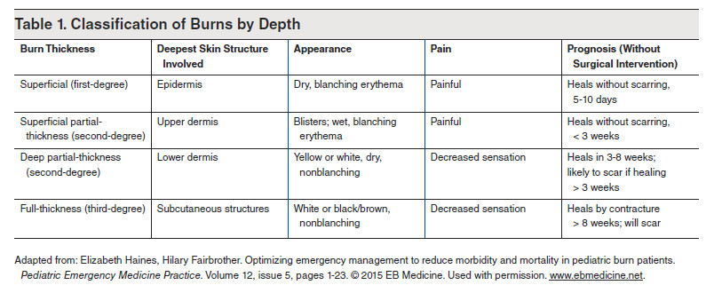 Burn - First Degree Burn - Burn Treatment - Thermal Burn - Trauma CME - Table 1. Classification of Burns by Depth