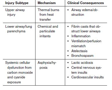 Table 1. Classification of Inhalation Injury