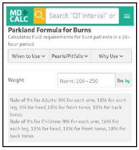 Parkland Formula for Burns Calculated Decisions