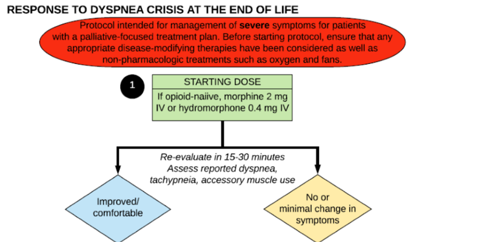 Figure 1. Acute Dyspnea Palliation Algorithm