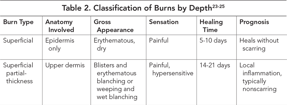Table 2. Classification of Burns by Depth